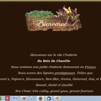Bois de Chaville