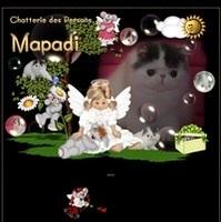 Persans Mapadi