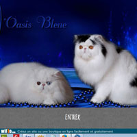 Oasis Bleue (de l )