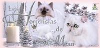 Hortensias de Méan (les)